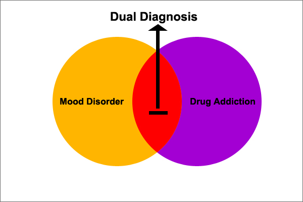 Illustrating the formation of Dual Diagnosis